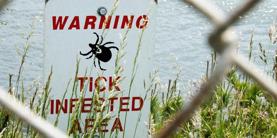 tick warning